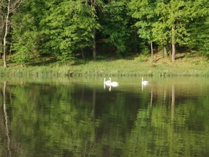 Lac Sisterea