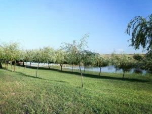 Lac Luncani