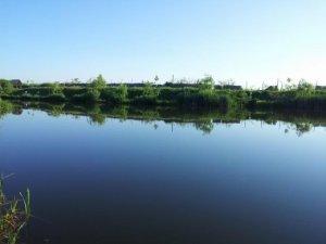 Balta pescuit Biharia