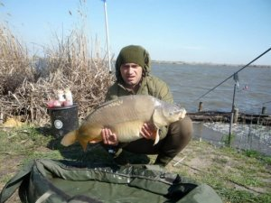 Fish Zone Coas