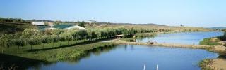 Lac Luncani cover