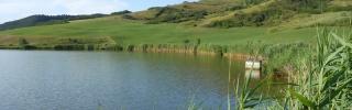 Lacul Bala cover