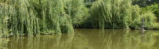 Lacul Kalman-To cover