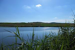 Lacul Toldal