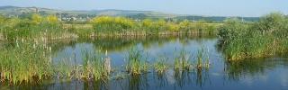 Lacuri Santioana cover