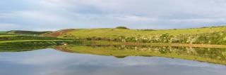 Balta Valea Ciorii cover