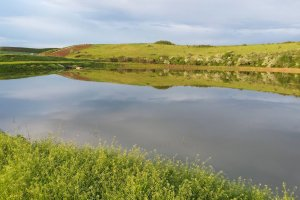 Balta Valea Ciorii