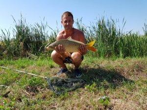 Pescaria Gliga
