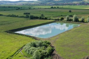 Lacul Bersa